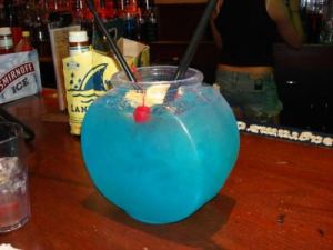 Big Fish Bowl